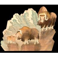 NL07-MUSK OX MOUNTAIN