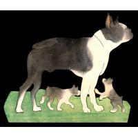 PD063-BOSTON TERRIER