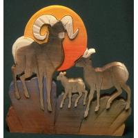 W227-MOUNTAIN SHEEP