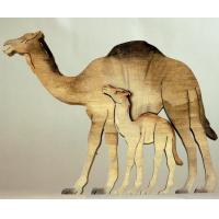 Z002- CAMEL